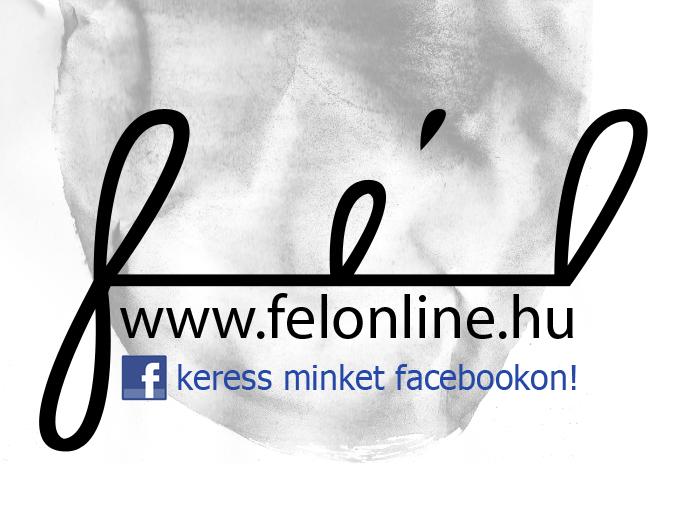 felonlinefacebook