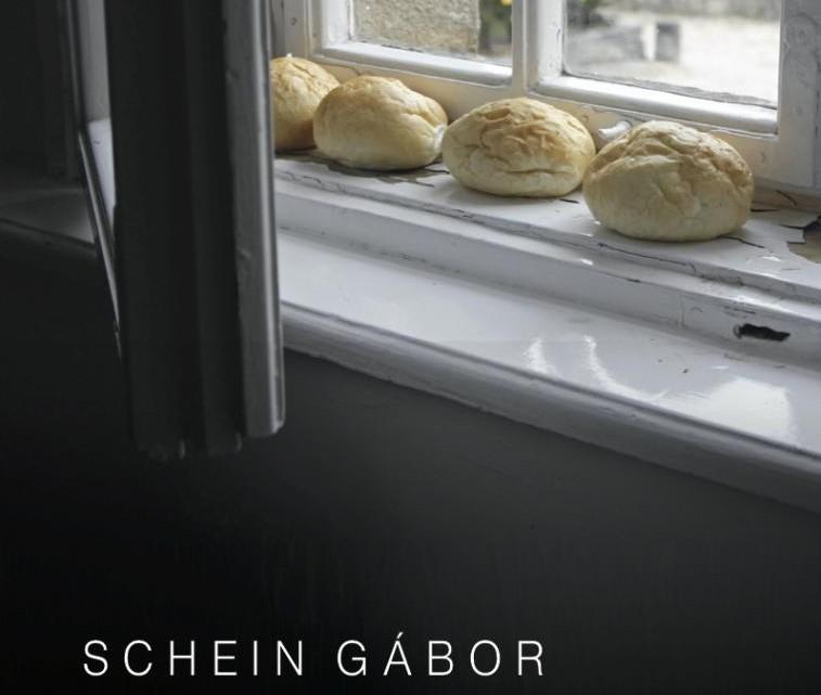 schein-sved