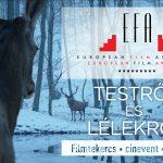 Európai Filmdíj – Szurkoljunk együtt a Testről és lélekről sikerének!