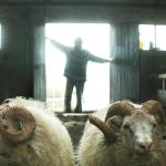 Büszke állattenyésztők balladája – Kosok filmkritika